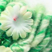 Wol van Knit Collage - Gypsy Garden Yarns