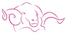 Logo Catherine's online wolwinkel